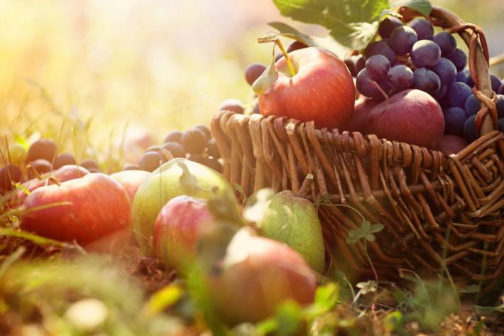 Как да поддържаме плодова градина без пестициди